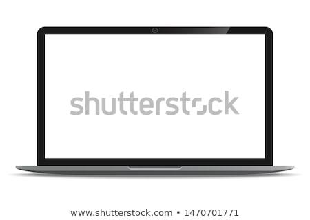 Breedbeeld monitor witte business kantoor internet Stockfoto © ozaiachin