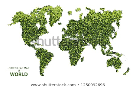 Green leaf world map, vector Stock photo © beaubelle