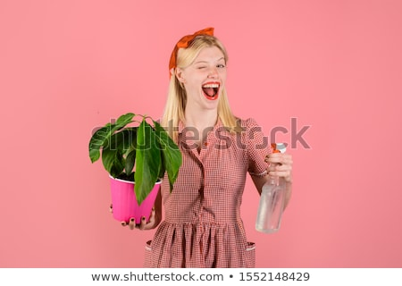 woman gardener taking care of small tangerine trees in pots stock photo © deandrobot