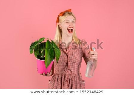 Nő kertész elvesz törődés kicsi mandarin Stock fotó © deandrobot