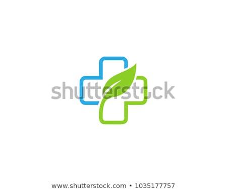 eczane · simge · yaprak · vektör · ikon · tıbbi - stok fotoğraf © djdarkflower