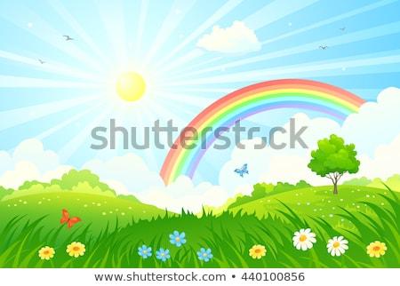 Zomertijd groene heuvel heldere zon regenboog Stockfoto © tuulijumala