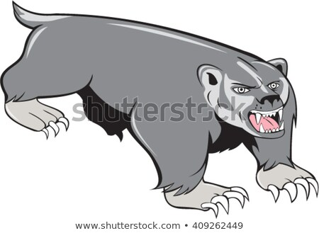 Badger Pouncing Cartoon Stock photo © patrimonio