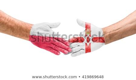 eu · Ierland · handen · schudden · handen · hand · vergadering - stockfoto © zerbor