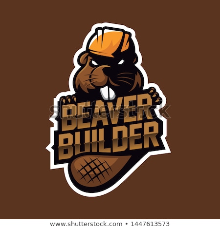 Beaver Builder Stock photo © derocz
