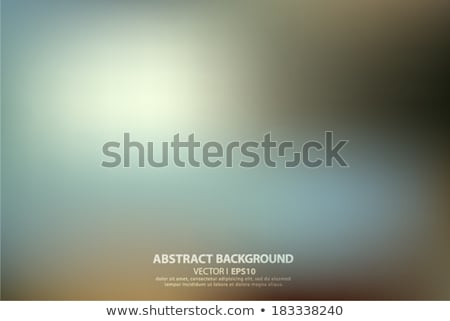 Holiday glowing blurred background. EPS 10 Stock photo © beholdereye