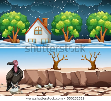 Two disaster scene with flood and drought Stock photo © bluering
