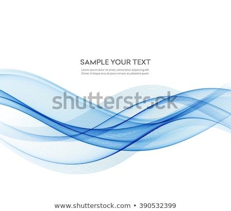 Absztrakt hullám mozgás illusztráció szín vektor Stock fotó © fresh_5265954