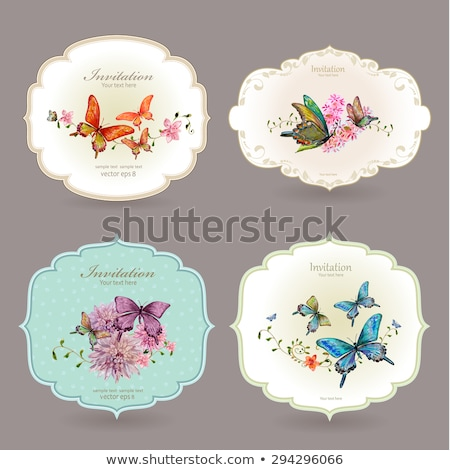 Label With Butterfly Stock photo © adamson