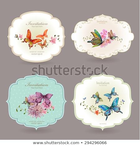 pillangó · átváltozás · illusztráció · gyerekek · iskola · gyermek - stock fotó © adamson