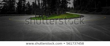 beyaz · yol · doğa · sokak · siyah - stok fotoğraf © albund