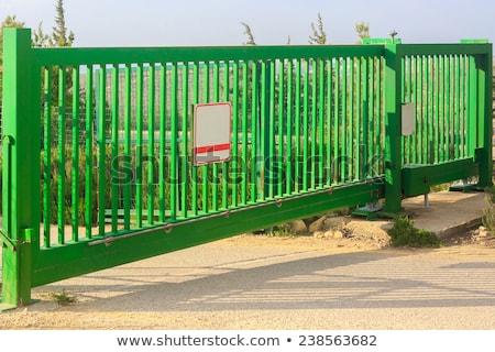 Green garage gate with padlock Stock photo © stevanovicigor
