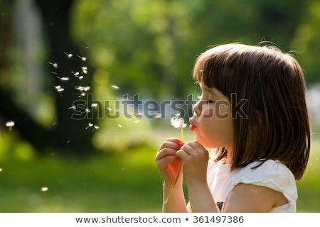 Girl blowing dandelion outdoors Stock photo © IS2