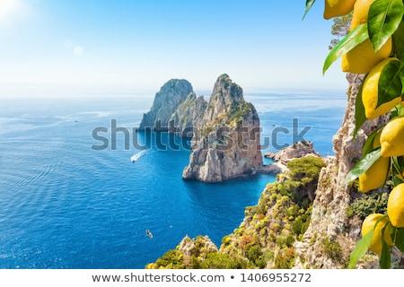 Nápoles · belo · ver · famoso · forte · Itália - foto stock © neirfy