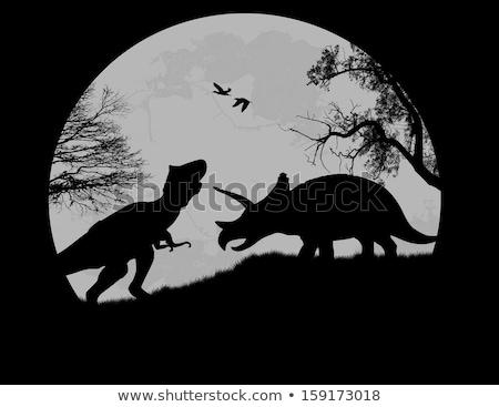 Dolunay gece örnek orman ay arka plan Stok fotoğraf © bluering