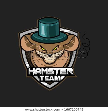 Karikatür hamster futbol örnek oynama mutlu Stok fotoğraf © cthoman