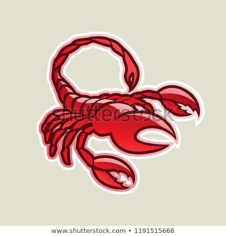 Rosso lucido scorpione icona vettore illustrazione Foto d'archivio © cidepix