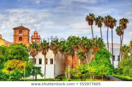Malaga templom kék éjszaka napfelkelte sziluett Stock fotó © benkrut