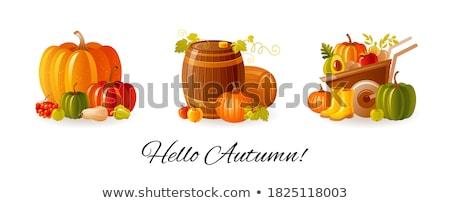 autumn card with pumpkins fruits and wine stock photo © karandaev