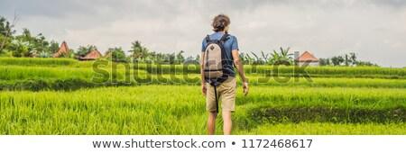young man on green cascade rice field plantation bali indonesia banner long format stock photo © galitskaya