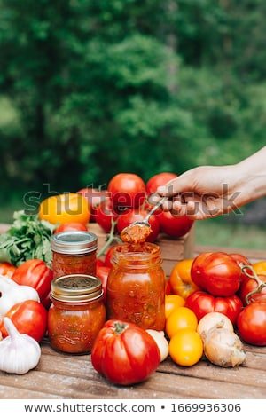 Ev yapımı domates baharatlar gri cam sebze Stok fotoğraf © furmanphoto