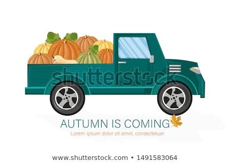 Van autumn harvest Vector. Harvest fall season poater templates Stock photo © frimufilms