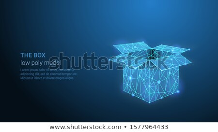 The Box - Abstract Low Poly Open Box In Trendy Style Design Foto stock © Tashatuvango