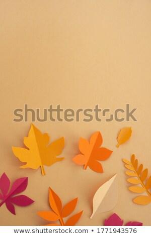 осень ручной работы красочный листьев шаблон Сток-фото © artjazz