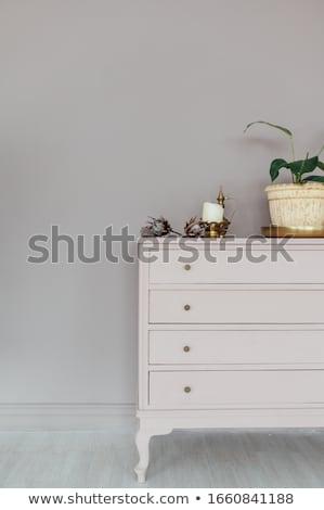 シック 胸 ホーム 植物 装飾 ストックフォト © ruslanshramko