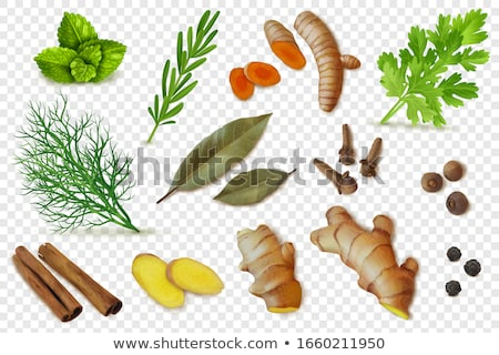 Turmeric roots, cinnamon and ginger Stock photo © furmanphoto