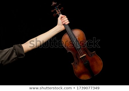 Woman displaying a classical baroque violin Stock photo © Giulio_Fornasar