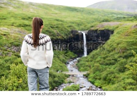 IJsland vrouw genieten majestueus waterval vrouwelijke Stockfoto © Maridav