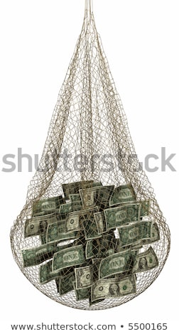 money in fishing net Stock photo © illustrart
