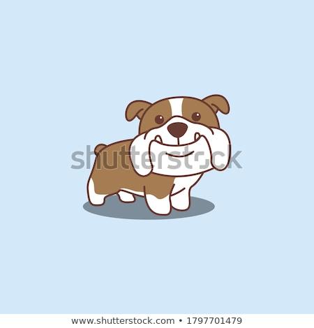 Stock foto: Bulldog Cartoon Face Vector Illustration