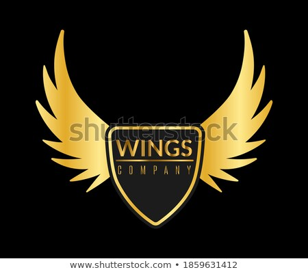 golden glossy abstract wings stock photo © cidepix