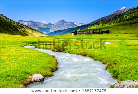valley of quiraing stock photo © hofmeester