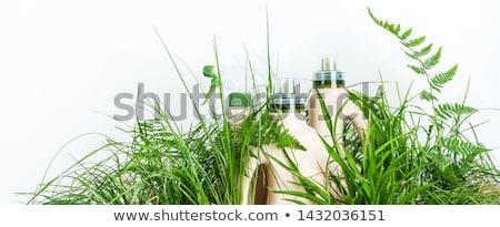 Milieu reinigingsproducten veilig geïsoleerd witte fles Stockfoto © kitch