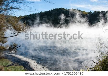Steam at a lake in Waimangu Stock photo © Hofmeester