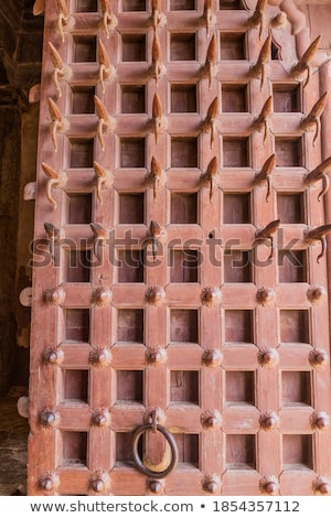 Latão porta forte Índia fundo Foto stock © calvste