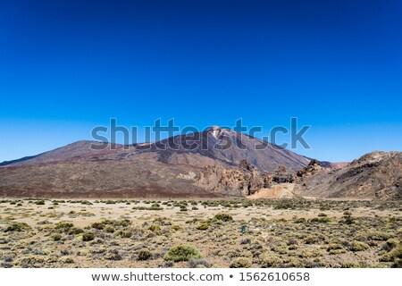 raod to el teide vulcano on tenerife Stock photo © compuinfoto