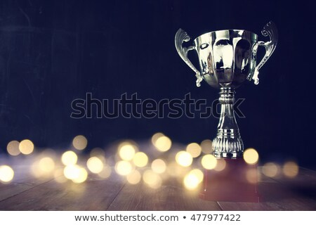 Silver Trophy Award Stock photo © Lightsource
