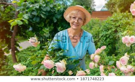 Senior dame planten tuin home gezicht Stockfoto © Andersonrise