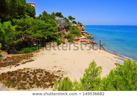 Cala dels Vienesos beach, in Miami Platja, Spain Stock photo © nito