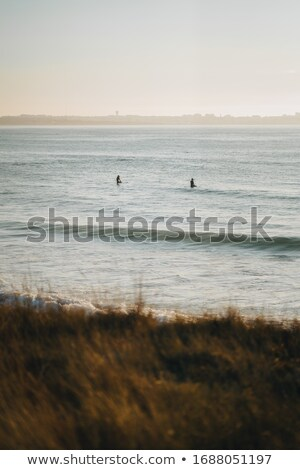 golden beach with lone surfboard Stock photo © morrbyte