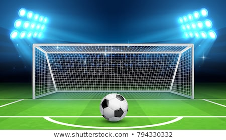 Goal on sports field Stock photo © zzve