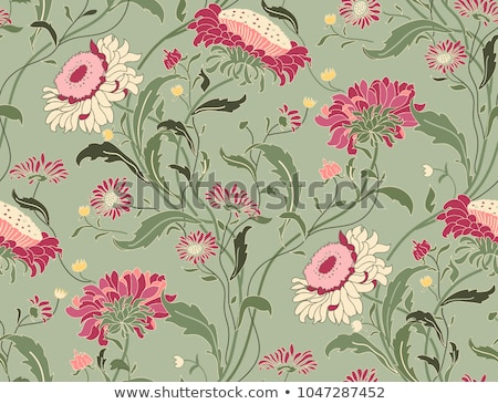 Set of vintage floral backgrounds Stock photo © Ray_of_Light
