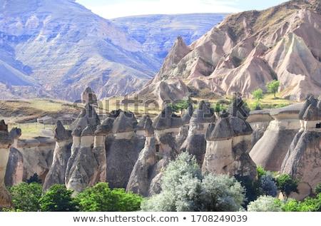 Fairy chimneys rock formations in Cappadocia Stock photo © BSANI