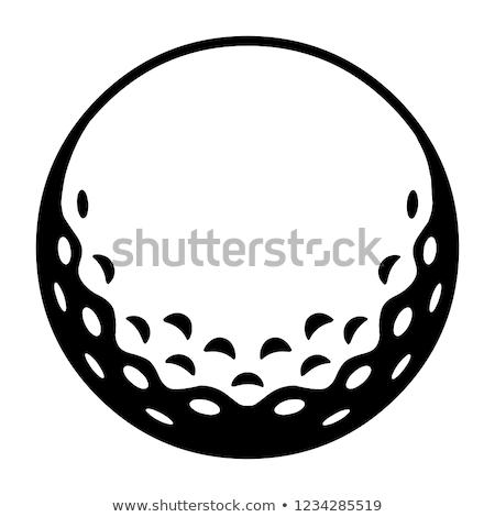 Golflabda lyuk fehér fű golf sport Stock fotó © m_pavlov