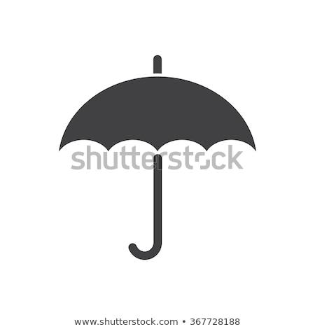 Paraplu iconen vector vintage parasols vis Stockfoto © vectorpro