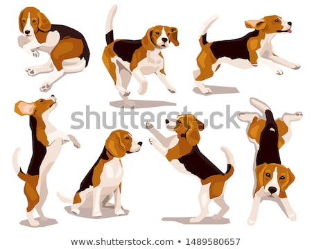 Komiks cartoon psa sylwetka kolekcja projektu Zdjęcia stock © tiKkraf69